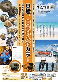 講演会「貝殻、奥深いんだカラ! ~生きた化石から見える生物の進化~」